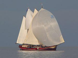 Waterwolf-regatta Segeln
