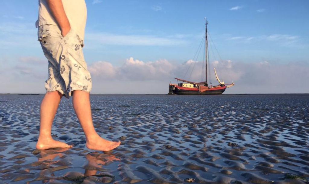 Mudflat hinking during your sailing holiday