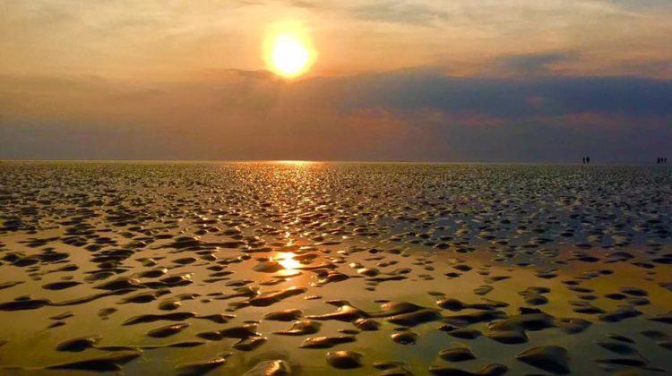 Drooggevallen zandbank