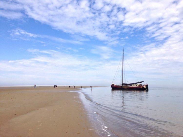 De Lotus aan het strand van Ameland