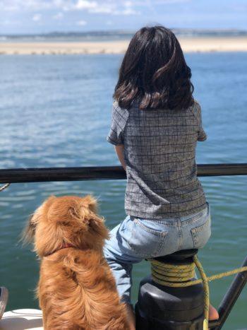 Zeehonden kijken aan boord van een traditioneel zeilschip