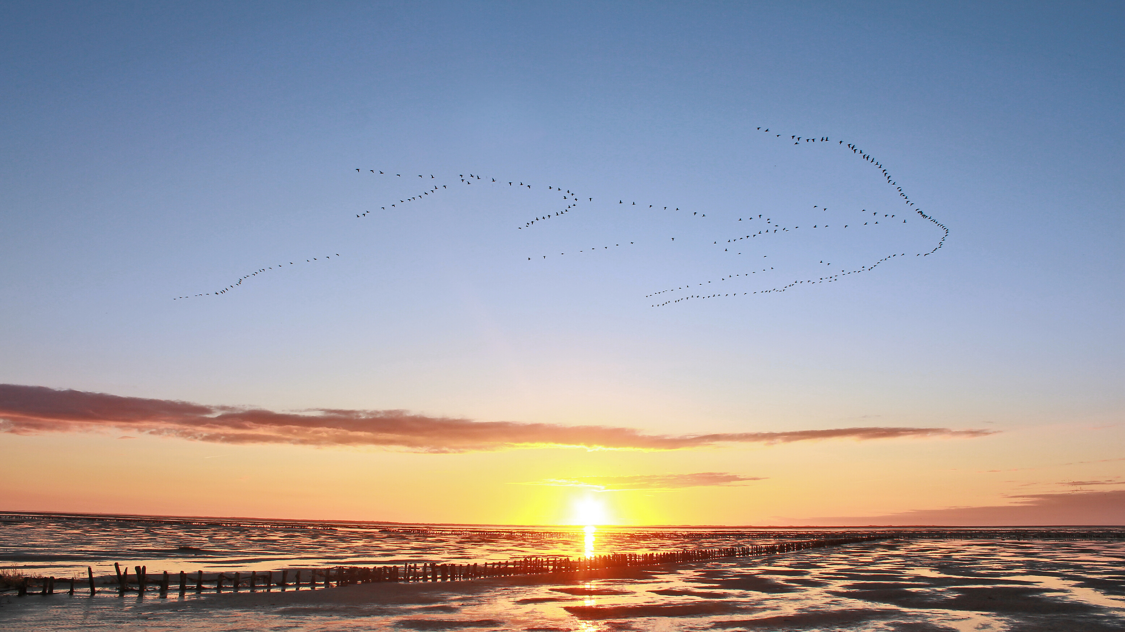The Wadden Sea area at low tide during sunset