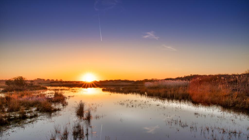 Natuurgebied Kroon's polder
