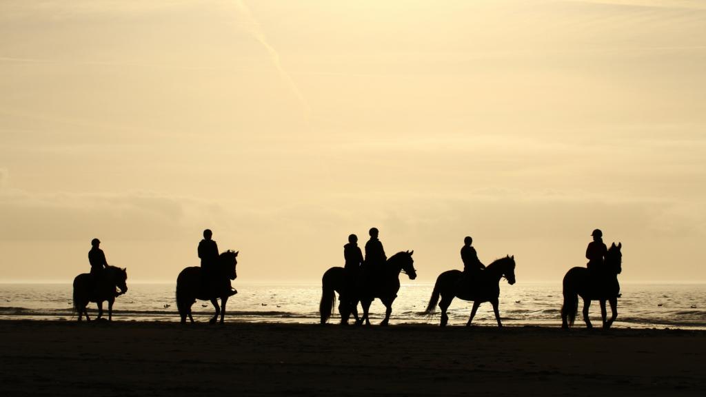 Paardrijden op de stranden van Terschelling