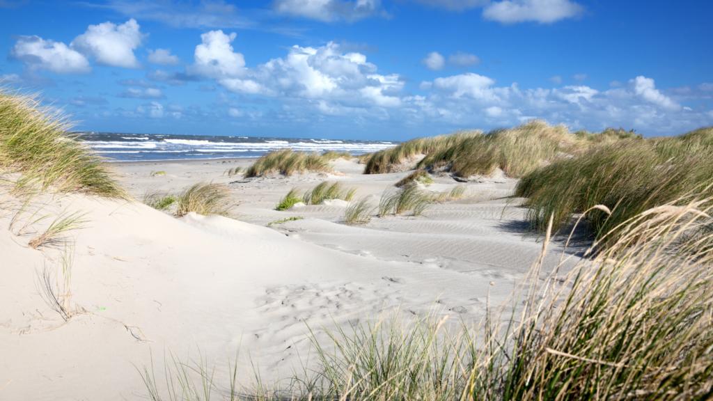 Noordzee strand van Ameland