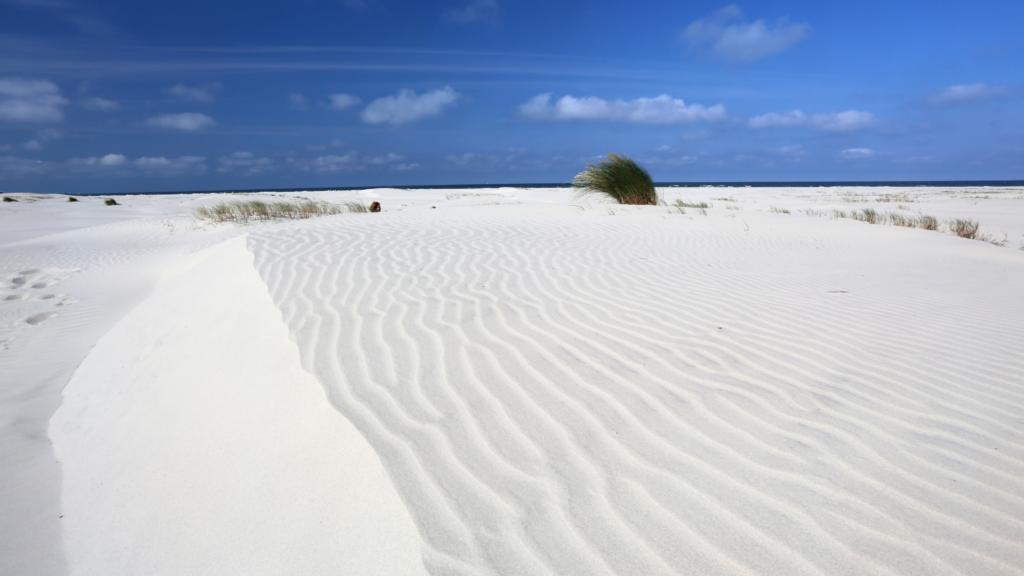 Natuurgebied De Balg Schiermonnikoog