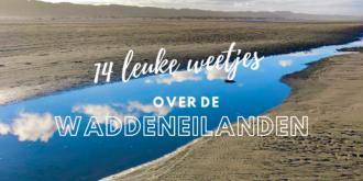 14 Fakten über die Wattenmeer-Region